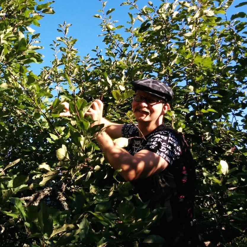 omenapuussa5_web
